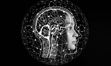 Beliefs, confirmation bias and the brain connection